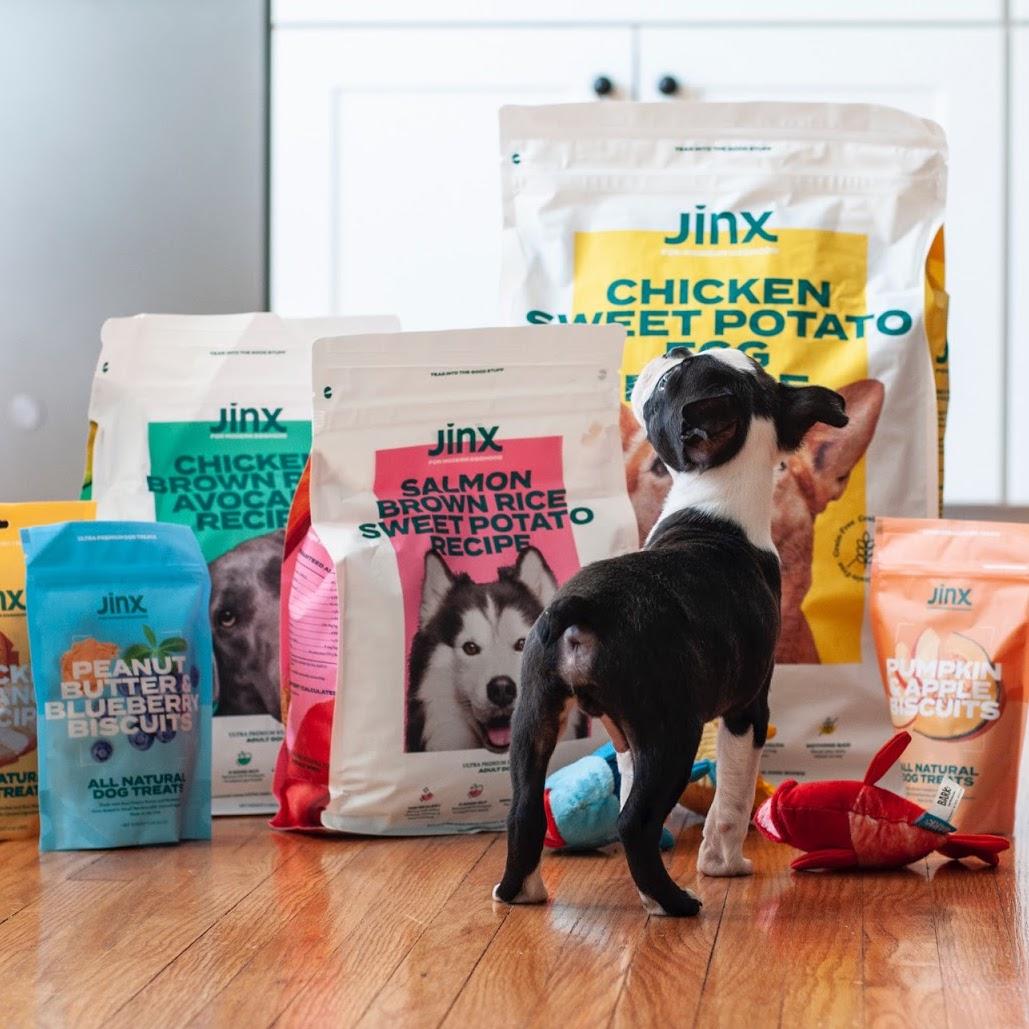 Jinx Case Study Image